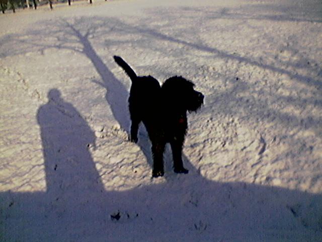 La mia ombra accanto a lei...